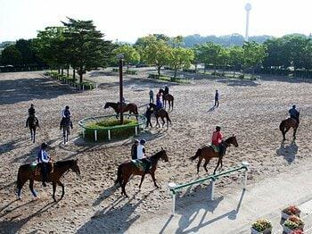 理不尽な人員削減要求で、暗澹たる厩務員の今後。~競馬界に残された解決策とは?~<Number Web> photograph by Yoko Kunihiro