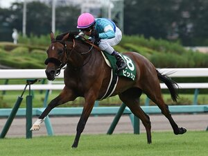 秋華賞は世代上位馬が不在で大混戦。ビッシュの力か、ジュエラーの格か。
