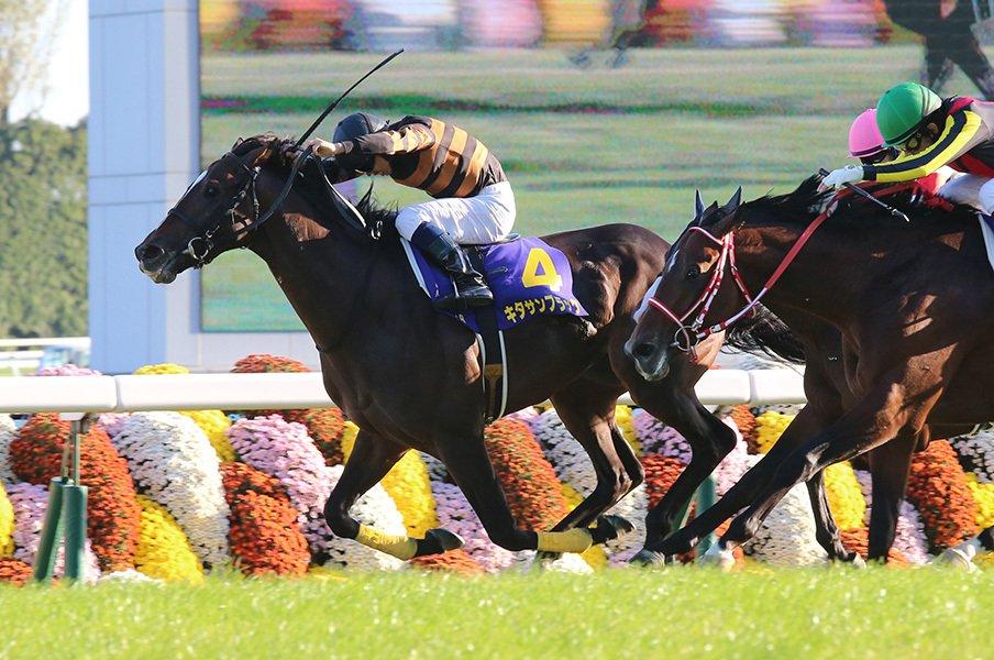 キタサンブラック菊花賞制し7戦5勝。北島三郎、馬主歴53年目のGI初戴冠。<Number Web> photograph by Yuji Takahashi