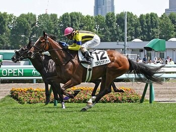 8月の新馬戦で1番人気に応えたフローレスダンサー。母ダンスインザムードはGI2勝。