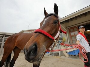 「無敗のオークス馬」は過去4頭だけ。絶好枠13番のラヴズオンリーユーは?