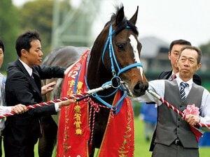 史上最強の障害馬が平地参戦。平地でも重賞級の脚力は本物か。~オジュウチョウサンが武豊を鞍上に異例の挑戦~