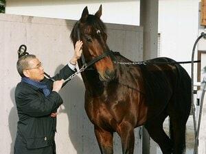 ディープはサンデーを超えたのか。種牡馬としての万能性と「黄金配合」。