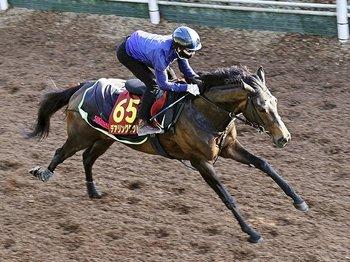 63年ぶり無敗の牝馬二冠なるか。松山弘平が語るオークスでの焦点。<Number Web> photograph by Kyodo News