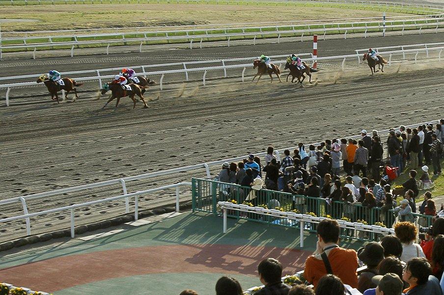 800頭の被災馬と競馬を守る人たち。馬や騎手のためにも早期再開を祈る。<Number Web> photograph by Kyodo News