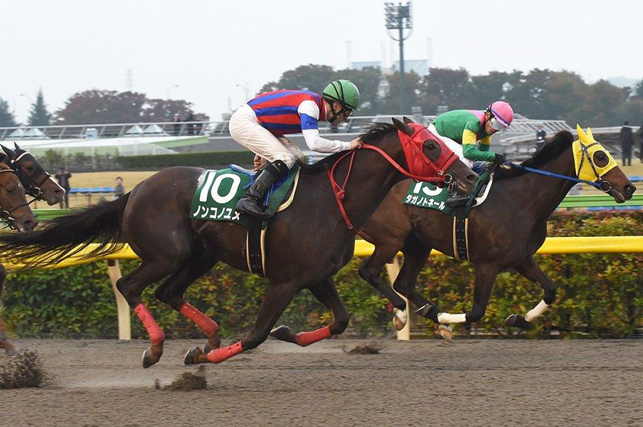 """チャンピオンズカップは2強+1頭。3歳馬ノンコノユメは""""渋いマーク屋""""。<Number Web> photograph by NIKKAN SPORTS"""