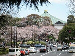 宴会自粛の千鳥ヶ淵、上野、谷中。桜の下で震災後の日本を考えた。