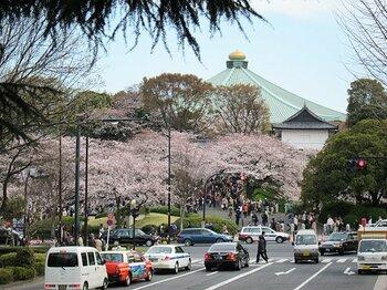 宴会自粛の千鳥ヶ淵、上野、谷中。桜の下で震災後の日本を考えた。<Number Web> photograph by Satoshi Hikita