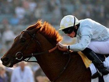 英国馬に注目のJCでウオッカは勝利を掴めるか。<Number Web> photograph by Getty Images