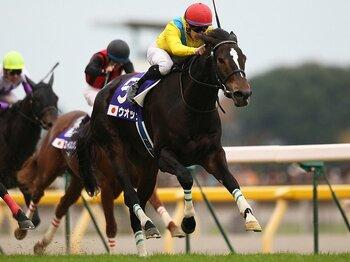 女王ウオッカが残した、強烈なる個性的蹄跡。~順調なら初仔が3年後デビュー~<Number Web> photograph by Hideharu Suga