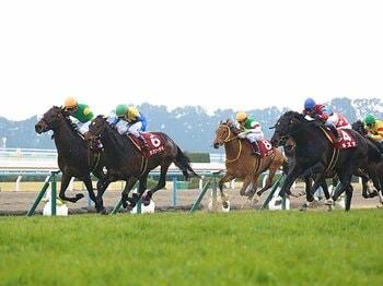 """キズナとハープ、復帰の京都記念。敗戦でも見られた、両頭の""""らしさ""""。<Number Web> photograph by Yuji Takahashi"""