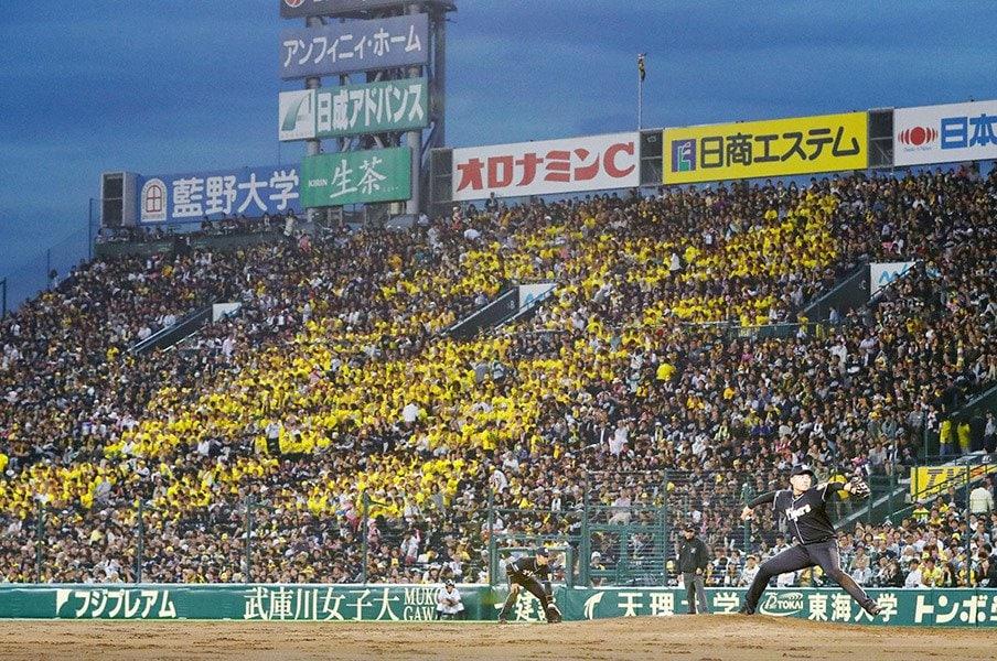 どれだけ負けても、野球は楽しめる。阪神ファンの人生が幸せな理由。<Number Web> photograph by Kyodo News