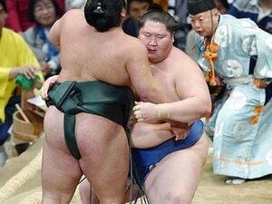 今年、全場所勝ち越しは1人だけ。逸ノ城の相撲は何が変わったか。