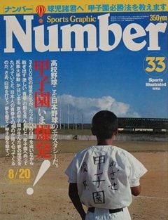 「甲子園」野球こそ日本野球のエクスタシーだ! - Number 33号