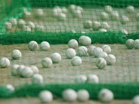 プロ野球とボールを巡る問題。