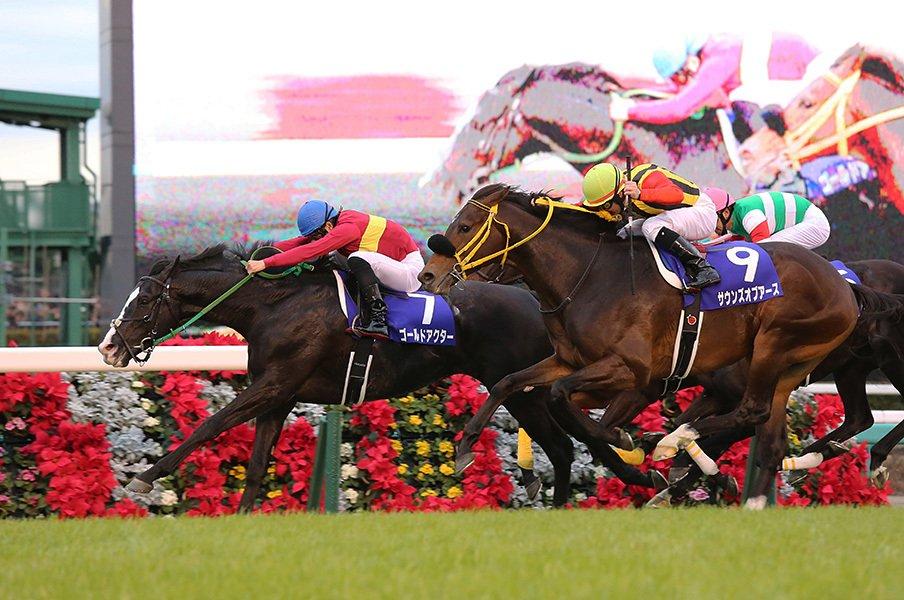 2015年のキーワードは「急成長」か。有馬記念で振り返る競馬界の1年。<Number Web> photograph by Yuji Takahashi