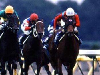 実力を見せつけた今年の牝馬たち。<Number Web> photograph by Shigeyuki Nakao