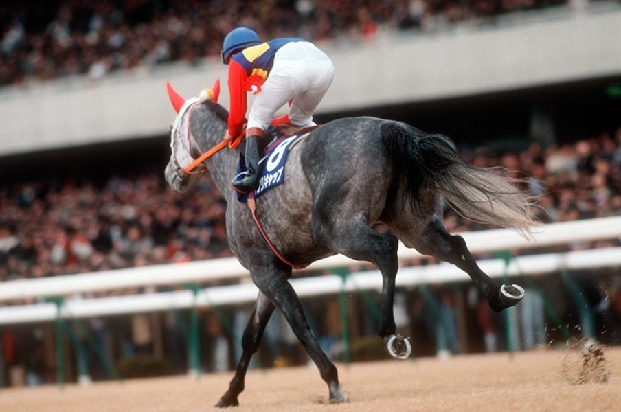 あの伝説の有馬記念から26年……。今だから話せるオグリキャップ秘話。<Number Web> photograph by Tomohiko Hayashi