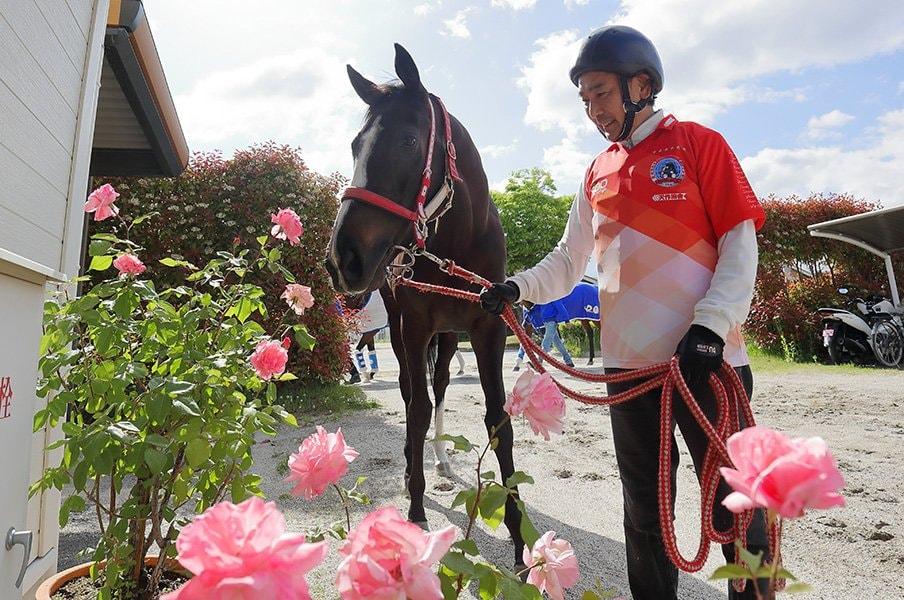 ヴィクトリアマイルは騎手の腕が肝。3週間ぶりにGIに復帰する武豊は?<Number Web> photograph by Yuji Takahashi