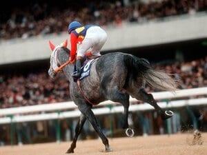 あの伝説の有馬記念から26年……。今だから話せるオグリキャップ秘話。