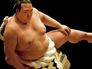 <19年ぶりの日本出身横綱誕生>稀勢の里「熱狂の春をもう一度――」