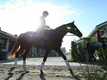 """""""強面白かった""""馬、オルフェーヴル。ラストランの有馬記念でサプライズは?<Number Web> photograph by Yuji Takahashi"""