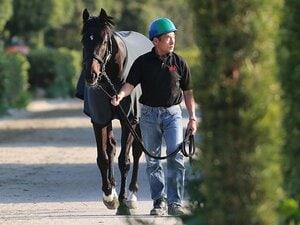 有力馬が不安を抱える天皇賞・春。淀の高速馬場で波乱は起こるのか?
