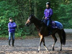 気性、脚質、3歳、フランス人騎手。マカヒキの凱旋門賞、条件は揃った。