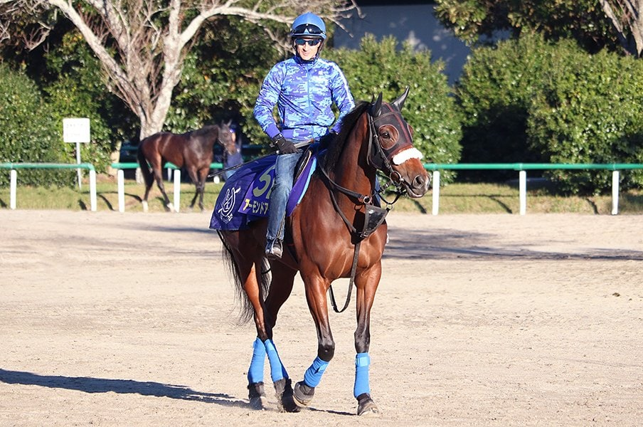 アーモンドアイが最強馬へ進化中。ルメールも「JC、自信あります」。<Number Web> photograph by Satoshi Hiramatsu