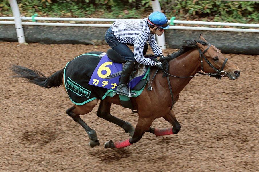 大混戦ダービーは騎手の腕次第!カデナで福永祐一の男泣きが見たい。<Number Web> photograph by Kyodo News