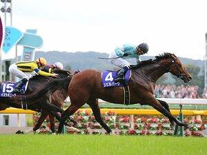 天皇賞・秋のスピルバーグに思う、重賞未勝利馬がなぜGIを勝つのか?