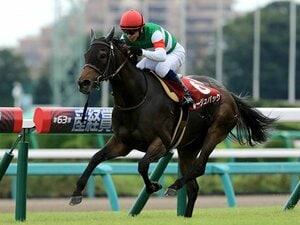ウオッカの登場もエリ女のおかげ?古馬牝馬GIの特殊性と、今年の予想。