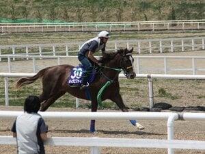 「日本一の牧場が送り出す名牝の仔 ~ファストフレンドの12~その2」