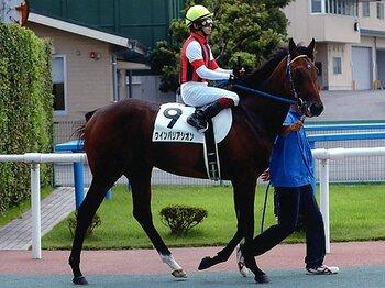 2歳新馬戦、野路菊ステークスと2連勝中のウインバリアシオンと福永祐一騎手のコンビ