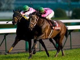 格調高き春の天皇賞、制するはどの馬か。