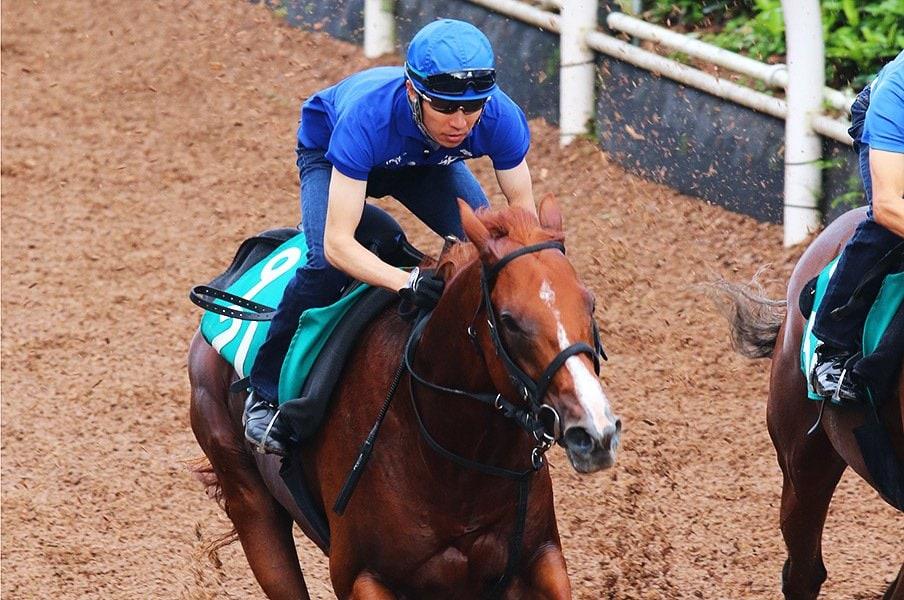 武豊のJRA全GI制覇は実現するか?馬よりも騎手に注目の朝日杯FS。<Number Web> photograph by Yuji Takahashi