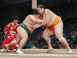 力士の体重は50年で30kg増えた。土俵を広くする、という選択肢は?