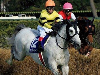 障害界の新星誕生をめぐる様々なドラマ。~騎手、調教師、そして素直な馬の絆~<Number Web> photograph by NIKKAN SPORTS