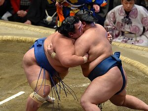 元魁皇・浅香山親方に聞く。琴奨菊の初優勝と、これから。
