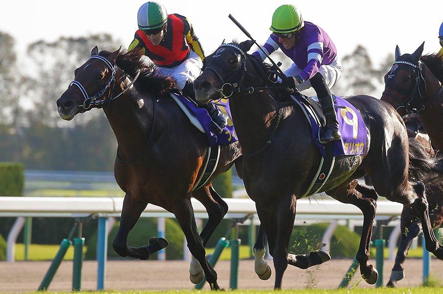 ルメールの判断、度胸、運は段違い。4戦目の馬で菊花賞制覇の名手ぶり。<Number Web> photograph by Yuji Takahashi