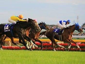ウオッカvs.ダイワスカーレット 1分57秒2+13分の伝説。 ~秋競馬・名勝負列伝~<Number Web> photograph by Yuji Takahashi