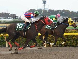 """チャンピオンズカップは2強+1頭。3歳馬ノンコノユメは""""渋いマーク屋""""。"""
