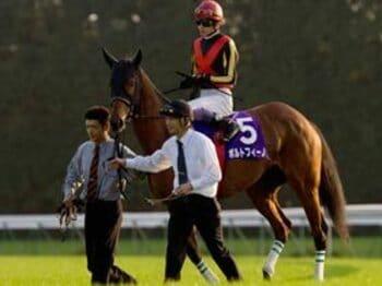有馬記念に向けて発進。気丈な天才・武豊。<Number Web> photograph by Yoko Kunihiro