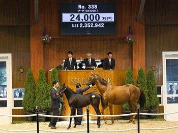 競馬の世界にもアベノミクス効果!?セレクトセールに見るターフの未来。<Number Web> photograph by JRHA