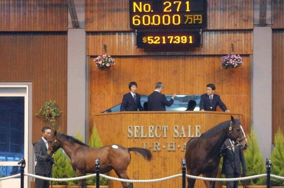 """《セレクトセール》歴代1位は""""6億円""""だけど…高額馬たちの「意外なその後」今年最高額の更新は?"""