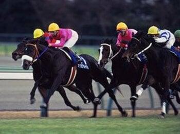 ヒシアマゾン(右端)は、最後の最後まで三冠馬ナリタブライアンに追いすがった