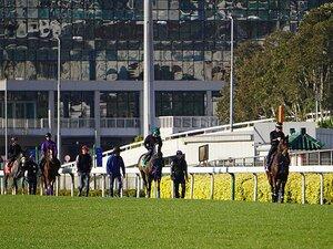 """アーモンドアイ回避も注目の香港GI。 4レースに臨む日本馬9頭は""""買い""""。"""