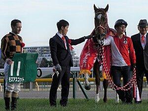 安田記念馬が初ダートで完勝。矢作師に導かれモズアスコット復活。