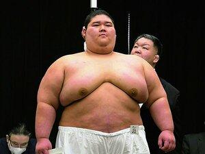 """""""就職場所""""の新弟子は40名。相撲界にドリームはあるか。~かつては150名、課題はお金~"""