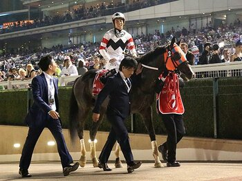 ドバイの新ダートコースで日本馬苦杯。ホッコータルマエを襲った思わぬ陥穽。<Number Web> photograph by Yuji Takahashi